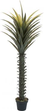 Europalms Yucca palm, artificial plant, 165cm